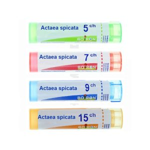 Actaea Spicata ch